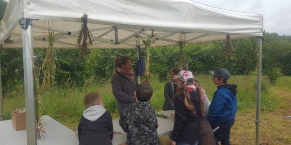 La fête de la nature à Hersin-Coupigny