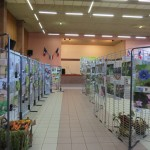 Exposition photo animaux en artois