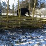 creation d'un bac jardin en noisetier tressé