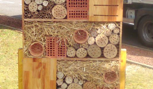 Construction hôtel à insectes
