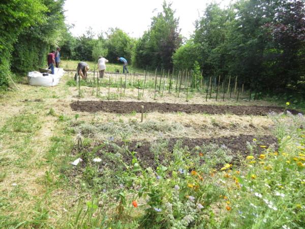 Les îlots de la santé :            un jardinage au naturel